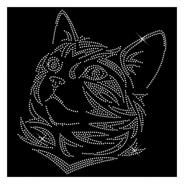 Strassmotiv - Katze XXL