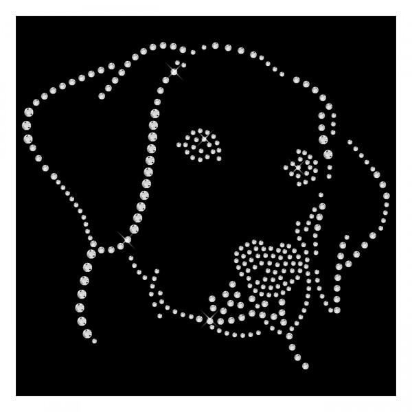 Strassmotiv - Labrador Hundekopf